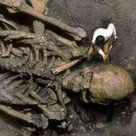 Останки великана ростом 40 футов нашли в Индии