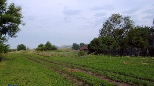Село Черновское