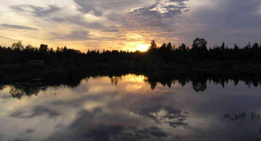 Речка Саля