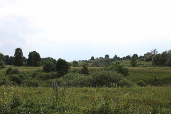 Село Селище Большеигнатовский район (Республика Мордовия)